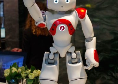 Zora-robot